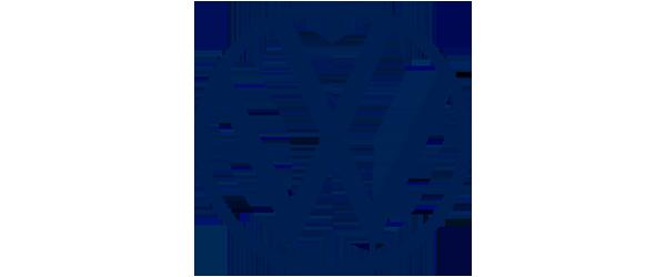Volkswagen diesel vehicles