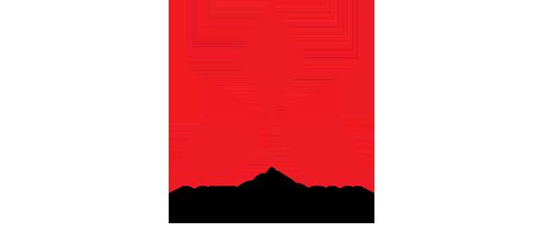 Mitsubishi diesel Injectors and Pumps
